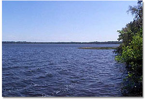 Lake Dorr Ocala National Forest